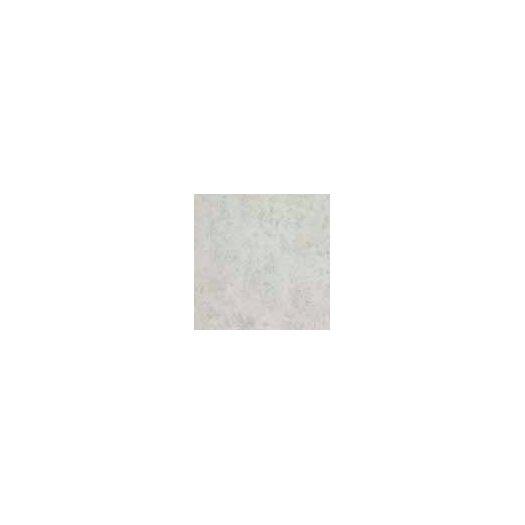 """Shaw Floors Costa D'Avorio 13"""" x 13"""" Floor Tile in Bone"""