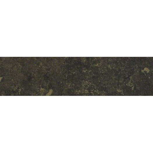 "Shaw Floors Lunar 12"" x 3"" Bullnose Tile Trim in Graphite"