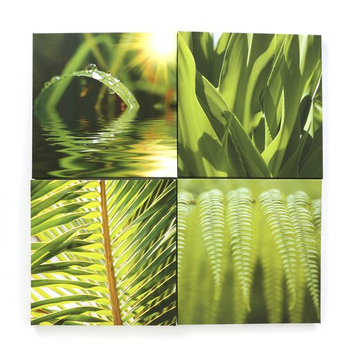 Graham & Brown Graham & Brown 4 Piece Photographic Print on Canvas Set