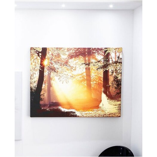 Graham & Brown Graham and Brown Metallic Forest Photographic Print on Canvas