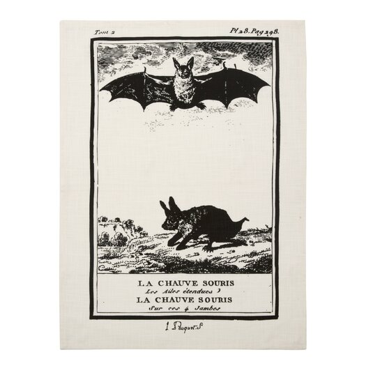 Vintage Engravings Bat Clingancourt Tea Towel