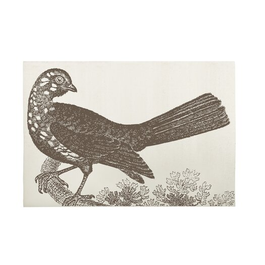 Thomas Paul Ornithology Bath Mat