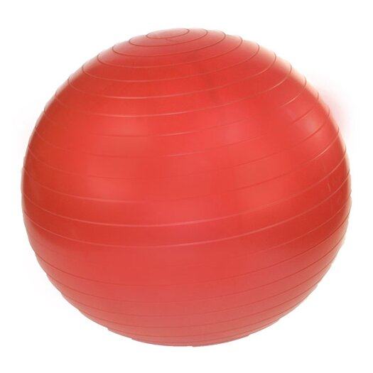 "J Fit 18"" Professional Exercise Ball"