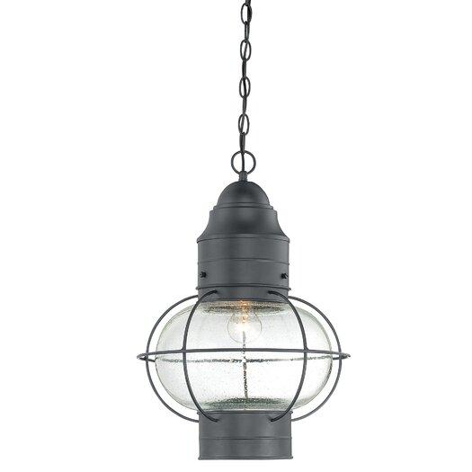 Quoizel Cooper 1 Light Outdoor Hanging Lantern