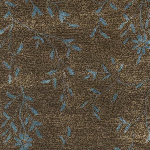 Safavieh Soho Brown/Light Blue Area Rug