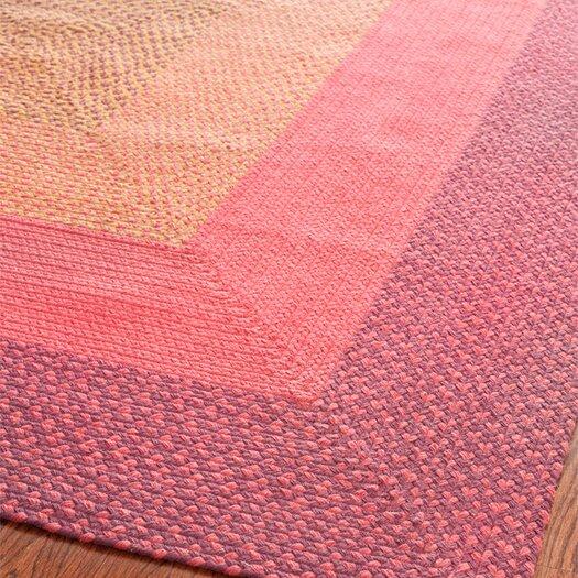 Safavieh Braided Pink/Beige Area Rug