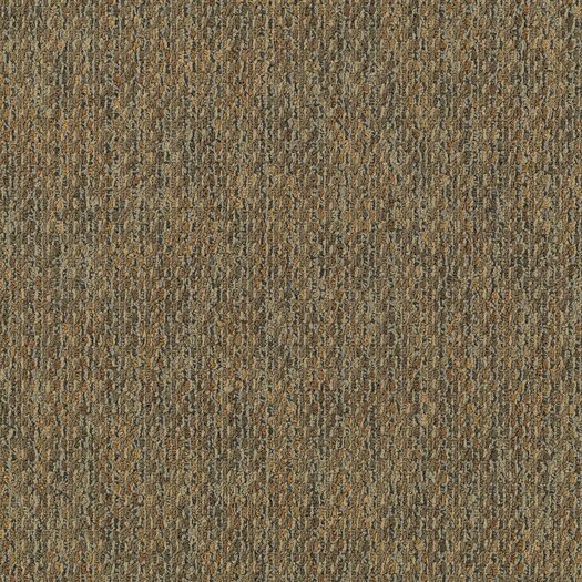 """Mohawk Flooring Aladdin Charged 24"""" x 24"""" Carpet Tile in Heat Cell"""