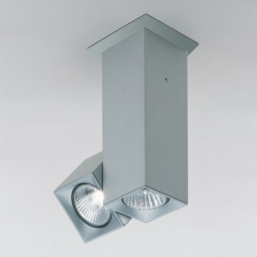 Zaneen Lighting Dau Spot Two Light Flush Mount with Rotating Spot Light