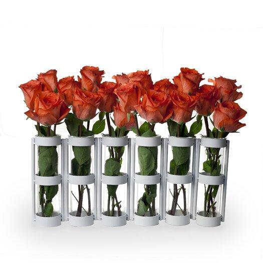 Danya B Large 6 Tube Hinged Vase