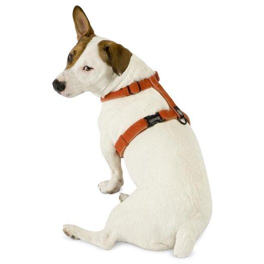 Planet Dog Cozy Hemp Adjustable Dog Harness