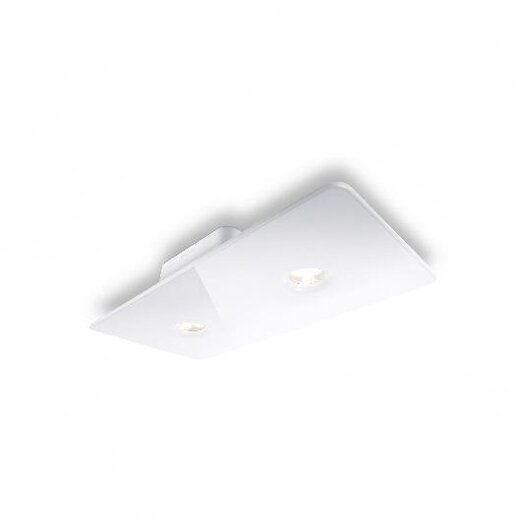 Philips Consumer Luminaire 2 Light Semi Flush Mount