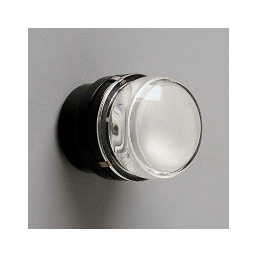 Oluce Fresnel Wall / Ceiling Lamp
