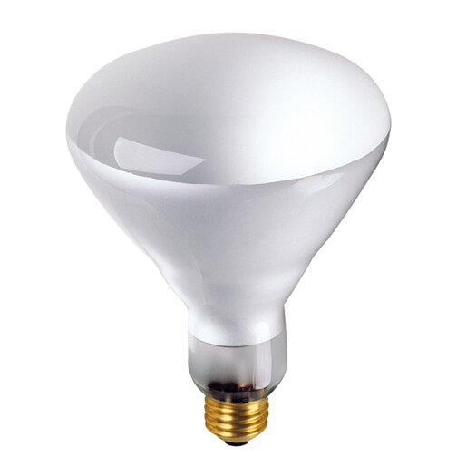 Bulbrite Industries 65W 130-Volt ( 2700K) Incandescent Light Bulb