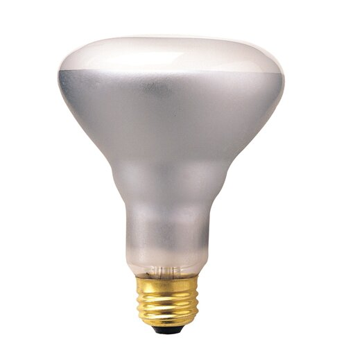 Bulbrite Industries 50W 120-Volt (2700K) Incandescent Light Bulb