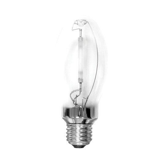 Bulbrite Industries (2000K) Light Bulb