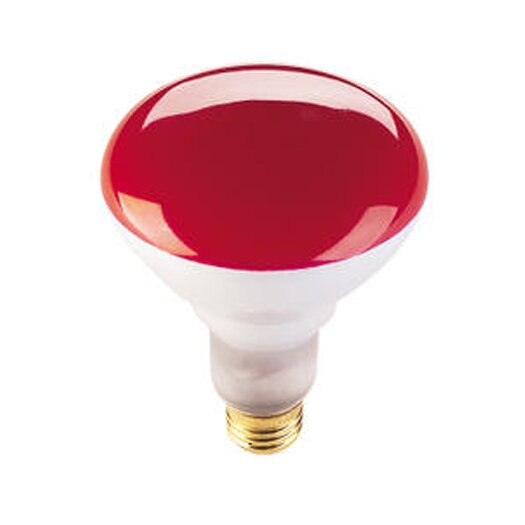 Bulbrite Industries 75W Red 120-Volt Halogen Light Bulb