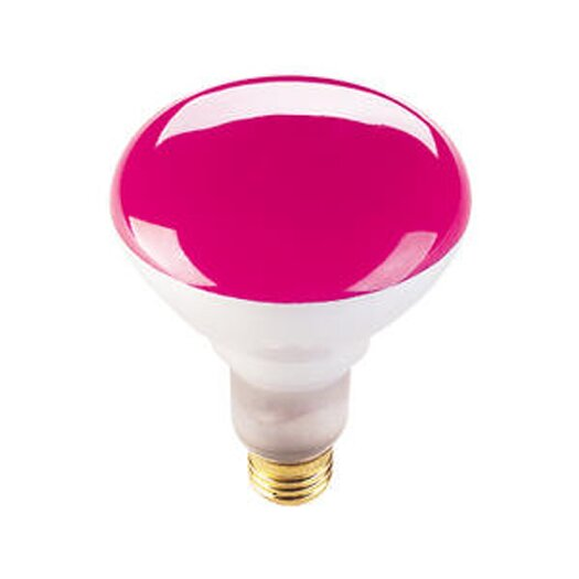 Bulbrite Industries 75W Pink 120-Volt Halogen Light Bulb