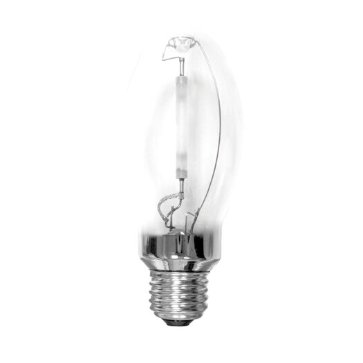 Bulbrite Industries 50W (2000K) Light Bulb
