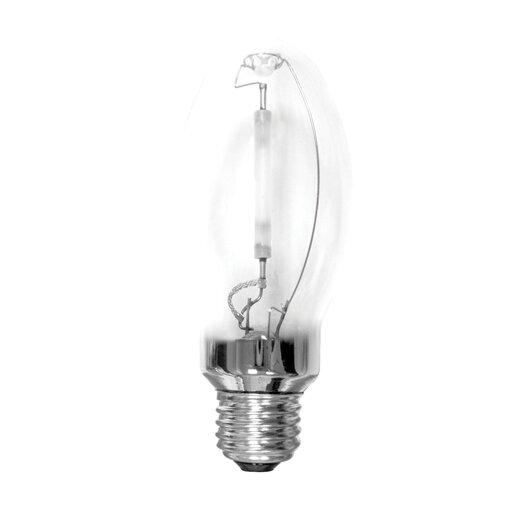 Bulbrite Industries 50W (2000K) Light Bulb