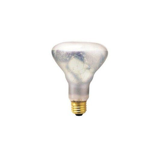 Bulbrite Industries 65W 130-Volt Incandescent Light  Bulb