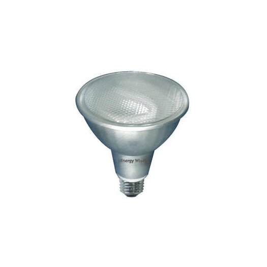 Bulbrite Industries 15W 120-Volt (3000K) Compact Fluorescent Light Bulb