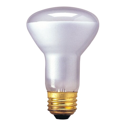 Bulbrite Industries 120-Volt Incandescent Light Bulb
