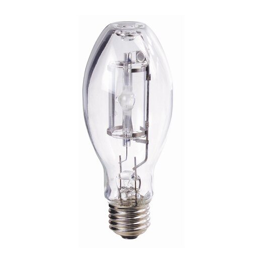 Bulbrite Industries 70W Incandescent Light Bulb