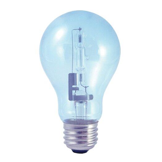 Bulbrite Industries 60W (2700K) Halogen Light Bulb (Pack of 2)