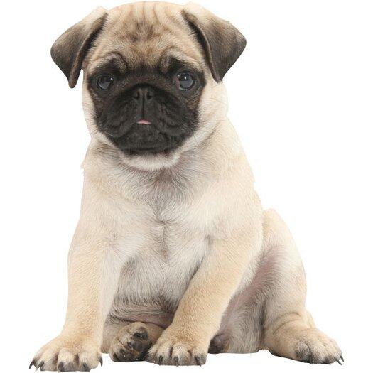 4 Walls Puppy Love Pug Wall Decal