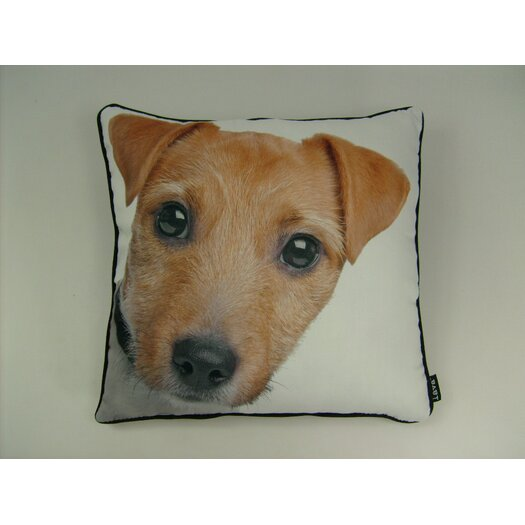 lava Jack Russell Pillow