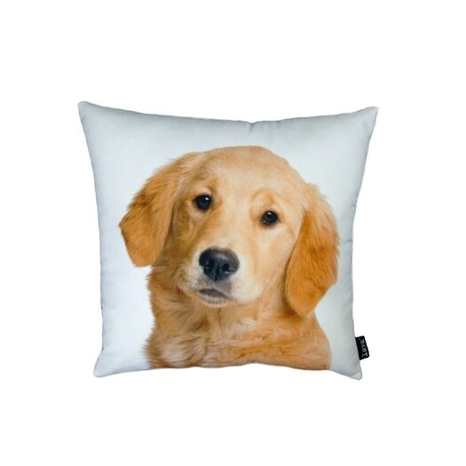 lava Golden Retriever Pillow
