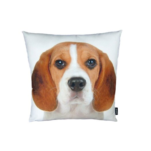 lava Beagle Pillow