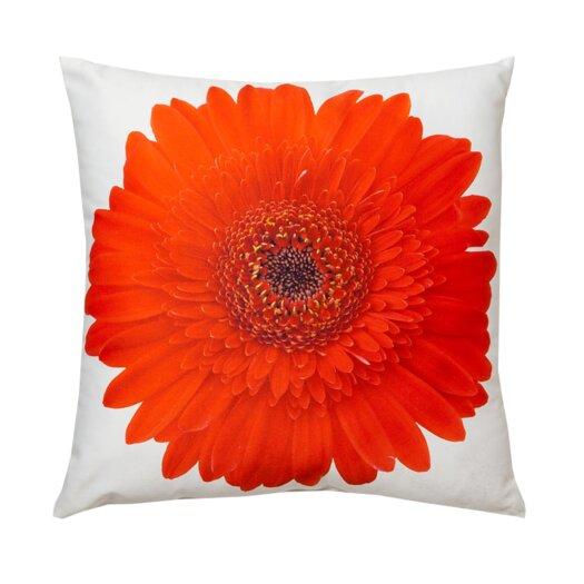 lava Gerbera Throw Pillow