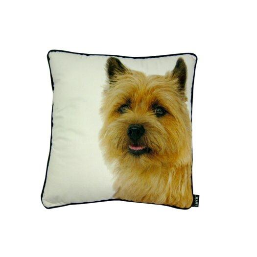 lava Yorkie Pillow