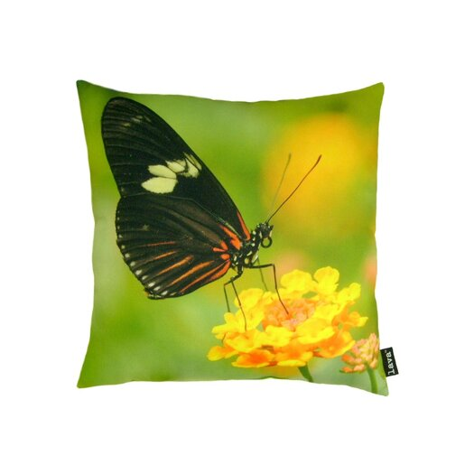 lava Butterfly on Yellow Bloom Pillow