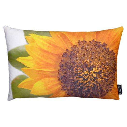 lava Helianthus Pillow