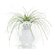 Wilhelmina Collection Home Accents Bloom My Buddy Vase