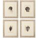 <strong>Propac Images</strong> Shell 4 Piece Framed Graphic Art Set