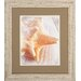 <strong>Conch 2 Piece Framed Graphic Art Set</strong> by Propac Images