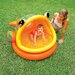 <strong>Intex</strong> Lazy Fish Baby Shade Pool