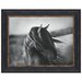 Fierce Grace Wild Stallion Horse Print Under Glass Wall Art