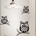 <strong>WallPops!</strong> Art Kit Give a Hoot Small Wall Decal