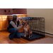 Travel Lite Steel Dog Crate