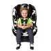 Pavilion G4 Covertible Car Seat
