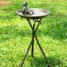 <strong>Cool Frog Birdbath</strong> by SPI Home