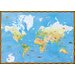 Mural Portfolio II Topographical World Map with Animal Pictures Wall Sticker