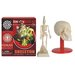 <strong>Skeleton Box Kit</strong> by Tedco Toys