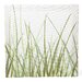 <strong>Inhabit</strong> Nourish Summer Grass Stretched Graphic Art on Canvas