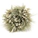 Urban Florals Autumn All Natural Fall Desk Top Plant in Planter
