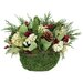 <strong>Urban Florals</strong> Holiday Fields Desk Top Plant in Basket